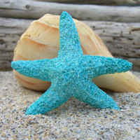 Starfish Aqua Turquoise Blue Sparkly Hair Barrette or Clip-MERMAID GLITTER-Beach Weddings, Mermaid Halloween Hair, Starfish, Tiffany Blue,