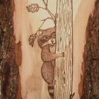 Wood burned Raccoon Wall Plaque; Wood burned Raccoon Wall Hanging; Raccoon Wall Decor; Rustic Wall Decor; Raccoon Rustic Wall Decor; Raccoon