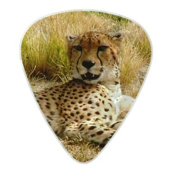 Cheetah Guitar Picks