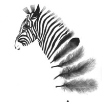 Zebra Art Print A3, Black and White Art, Wall Art Home Decor, Feather Art, Zebra Feather Watercolor