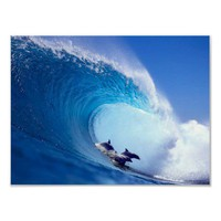 Surfing Dolphins Posters from Zazzle.com