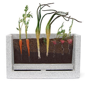 Root Vue Farm