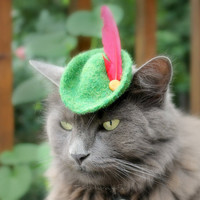 Halloween Cat Costume Robin Hood by ToScarboroughFair on Etsy