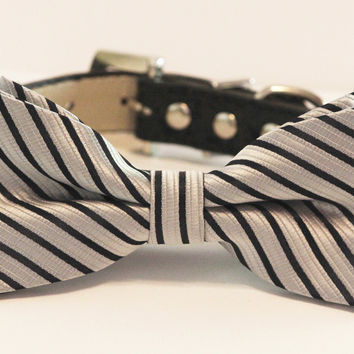 Silver Black Dog Bow Tie with high quality Black leather collar- Chic Wedding dog bow tie