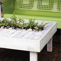 DIY Patio Cocktail Table With A Built-In Mini Garden | Shelterness