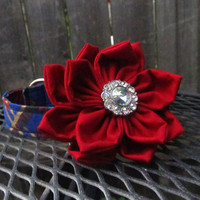 Dog collar and Flower - Christmas Blue, Red, and Gold Collar and Red Poinsettia Flower Combo