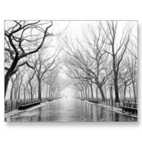 Poets Walk Central Park Card - New York Cards Postcards from Zazzle.com