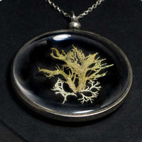 Specimen Necklace 0014 Mixed Lichen