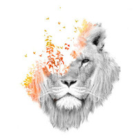 If I roar (The King Lion) Art Print by Budi Satria Kwan | Society6