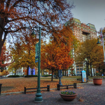 Memphis Fall In Court Square 005