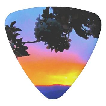 Sunset Guitar Picks