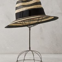 Moonlet Fedora by Eugenia Kim Black & White All Scarves