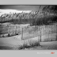 Beach Decor, Beach Art, Black and White Photography, Sand Dunes Photo, Beach Photography, Beach Cottage Decor