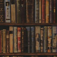 Retro To Go: Library wallpaper by Andrew Martin