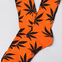 The Plantlife Socks in Orange & Black