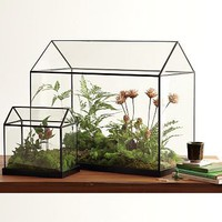 Glass Greenhouses | west elm
