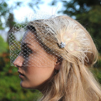 Bridal Birdcage Veil with feather Fascinator hair clip - Fiona