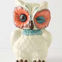 A Real Hoot Canister by Anthropologie Multi One Size Kitchen
