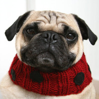 Lovely Little Ladybug Neck Warmer for Dogs by jessicalynneart