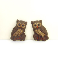 Owl Wall Hangings, Set of 2, Retro Kitsch Home Decor