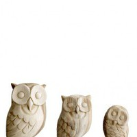 Wood owls - Plmo Ltd