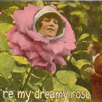You Are My Dreamy Rose Weird Cute Postcard