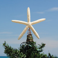 Starfish Tree Topper - White Finger Starfish