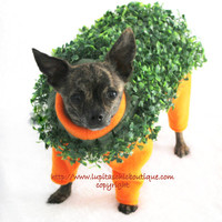Terracotta Terrier Chia Pet Dog Halloween Costume Cha Cha Cha Chia