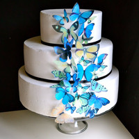 The Original EDIBLE BUTTERFLIES Assorted Blue and by SugarRobot