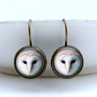 Barn Owl Earrings - Glass Art Earrings in Vintage Bronze