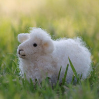 Sheep Needle Felting kit by bearcreekdesign on Etsy