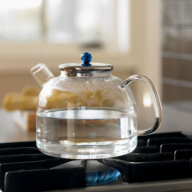 Heat Proof Glass Tea Kettle - VivaTerra