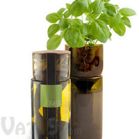 Grow Bottle: Grow your own herbs using repurposed wine bottles.