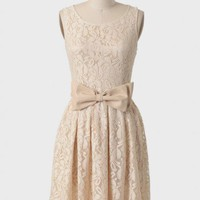 meringue lace belted dress in cream at ShopRuche.com