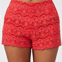 Wildflower Crochet Shorts
