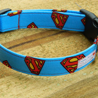 Large/XL Sky Blue Superman Shields Dog Collar