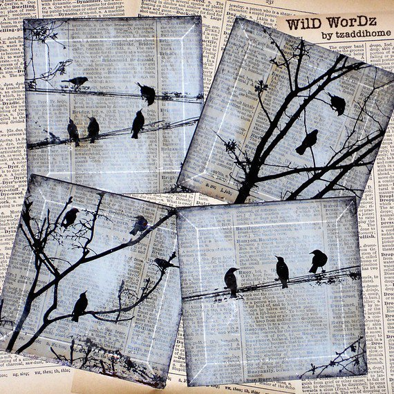 Black Bird Handmade Glass Coaster Set from Upcycled