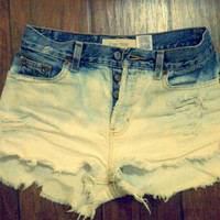 Ombre Highwaisted Shorts (Made to Order)