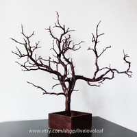 Brown Painted Manzanita Jewelry Tree, Jewelry Display,  Unique Jewelry holder, Real Tree Branch Jewelry Organizer