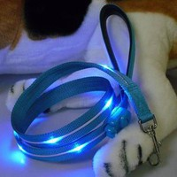 Buy a Flashing Dog Leash For Sale