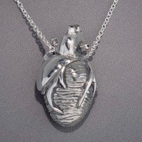 Silver Anatomical Heart Necklace 18 inch chain by heronadornment