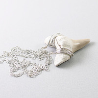 Shark tooth necklace: fossil jewelry silver wire wrapped jewelry real pendant gray sterling