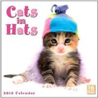Cats in Hats 2013 Wall (calendar): Sellers Publishing: 9781416288886: Amazon.com: Books
