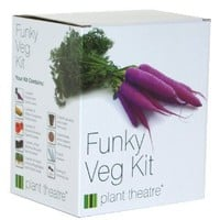 Funky Veg Kit by Plant Theatre - 5 Extraordinary Vegetables to Grow: Amazon.co.uk: Garden & Outdoors