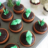 Sweet Sprout Cupcake Toppers (12 Sprouts &amp;  Terra Cotta Flower Pods)