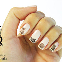 Cat Water Transfer Nail Sticker