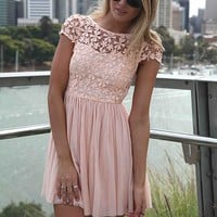 Pink Embroidered Lace Top Dress with Tulle Pleated Skirt