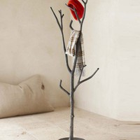 Branch Coat Tree - New - Furniture - VivaTerra