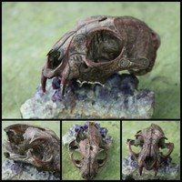 THE DEATH SEEKER  bobcat shaman spirit skull  by WolfpackTribal