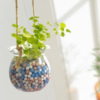 INFMETRY:: Mini Hanging Pot - Decor - Home&Decor